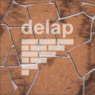 Delap